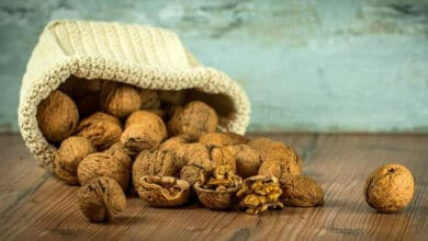 Comer nueces para reducir el nivel de colesterol