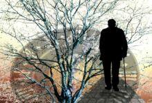 El proceso de los recuerdos y el Alzheimer
