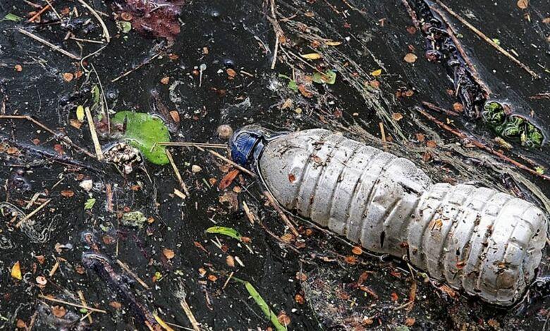 Enzimas para destruir botellas de plástico