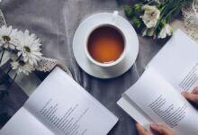 Wikilibros, colección de libros y manuales gratuitos