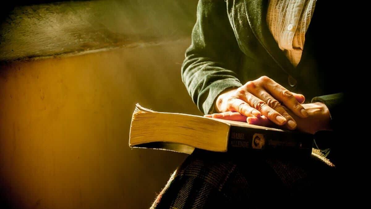 La literatura semidefinicional y el significado de las palabras