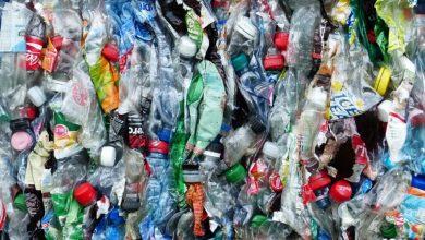 Para evitar la contaminación de los plásticos hay que arbitrar medidas sobre su uso