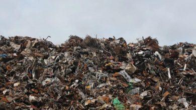 Se ha creado una IA para clasificar la basura