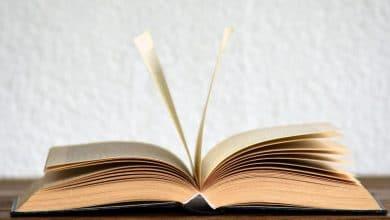 Iedra, diccionario inverso de la Lengua Española