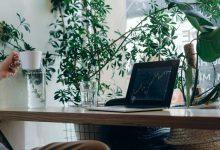 Cómo proteger los datos con FileVault en un Mac
